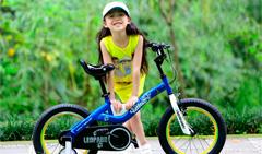 Снова в продаже популярный велосипед от фирмы Royal Baby - Royal Baby Leopard Steel.