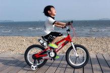 Велосипеды Royal Baby: безопасность и качество для ваших детей